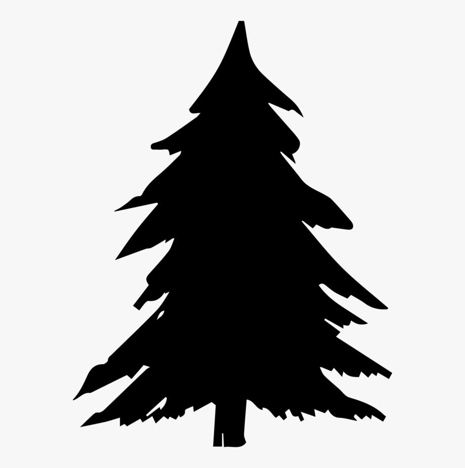 Pine Tree Clipart Tree Shadow Free Collection.