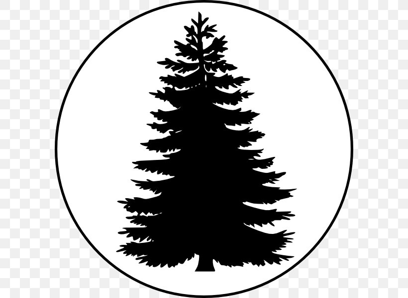 Pine Tree Conifers Clip Art, PNG, 600x600px, Pine, Black And.
