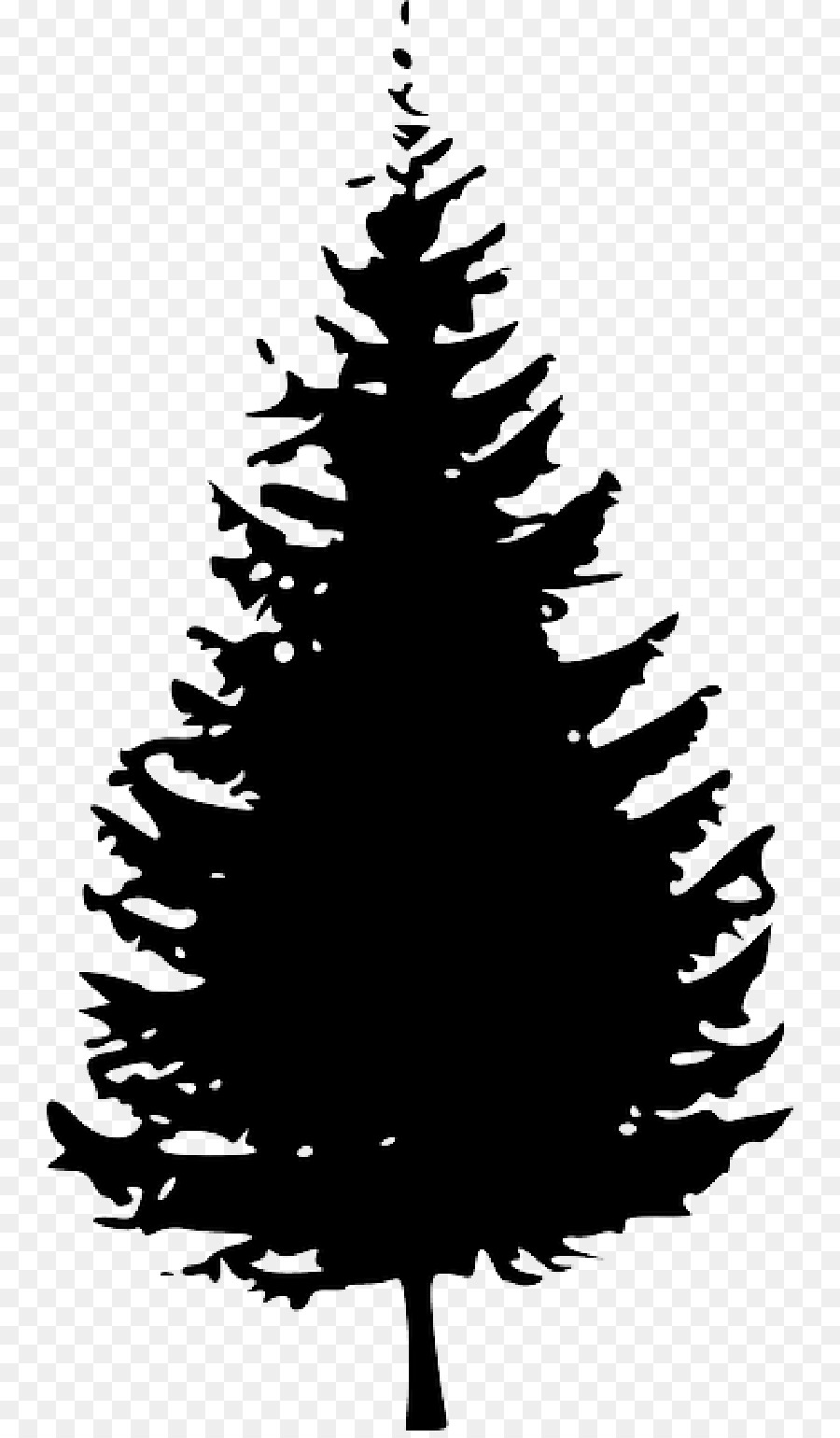 Pine Tree Fir Clip art.
