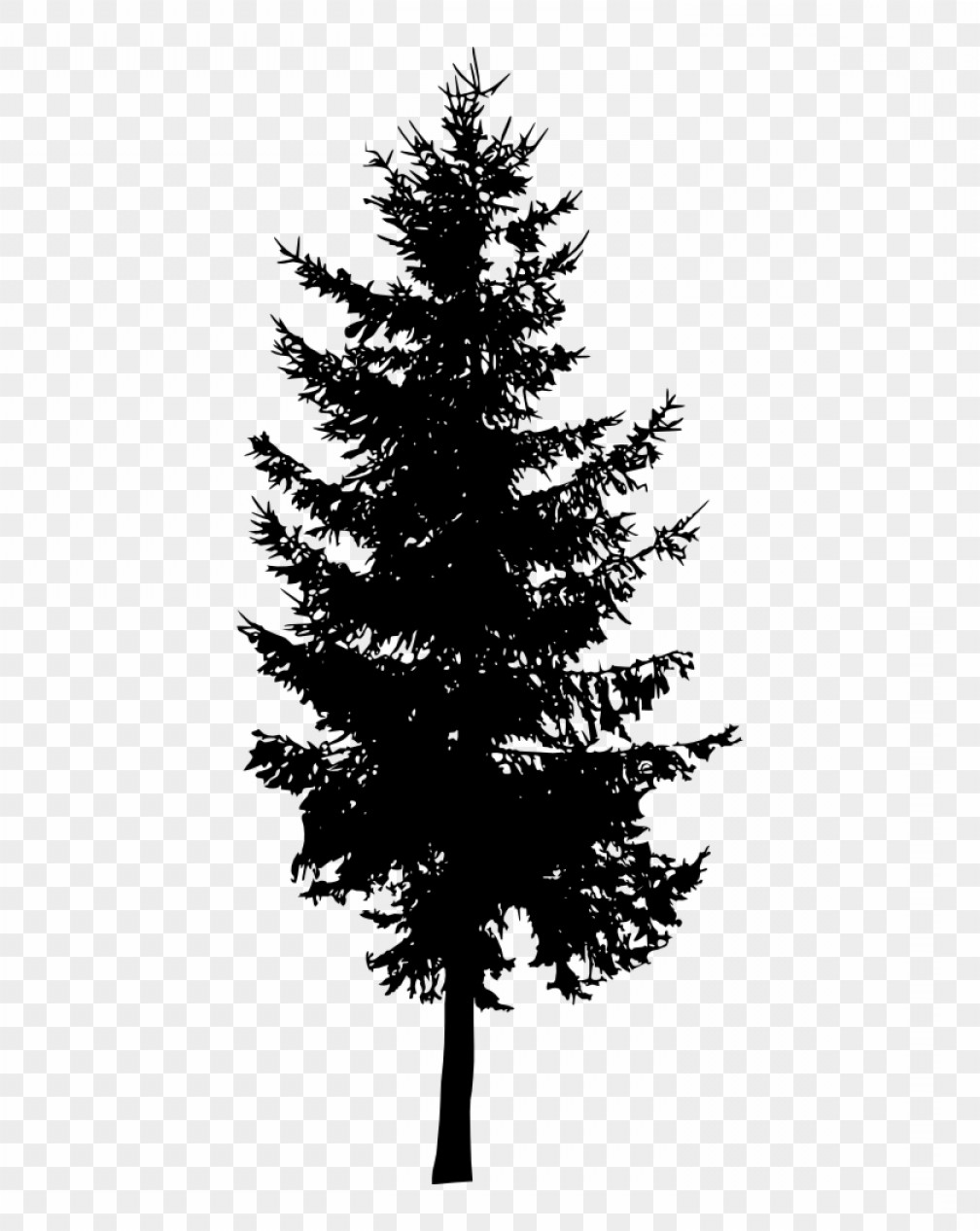 Mhimhndkfree Download Pine Tree Silhouette Png.