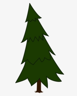 Free Pine Clip Art with No Background.