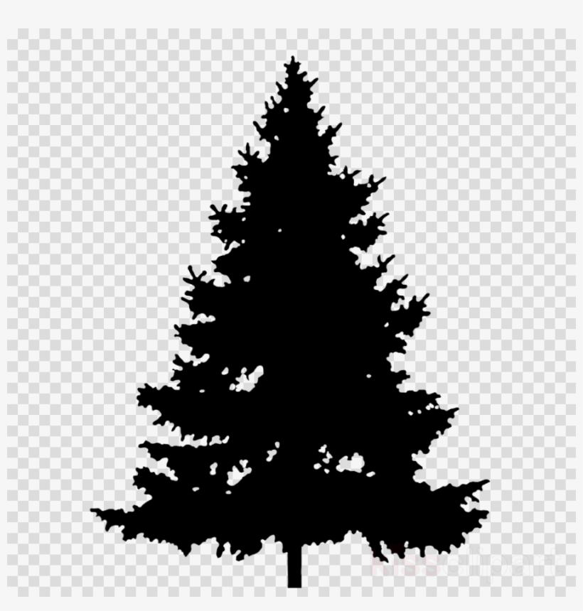 Pine Tree Clipart Pine Clip Art.