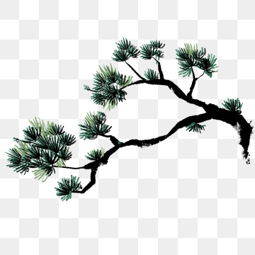 Pine Tree Png, Vector, PSD, and Clipart With Transparent.