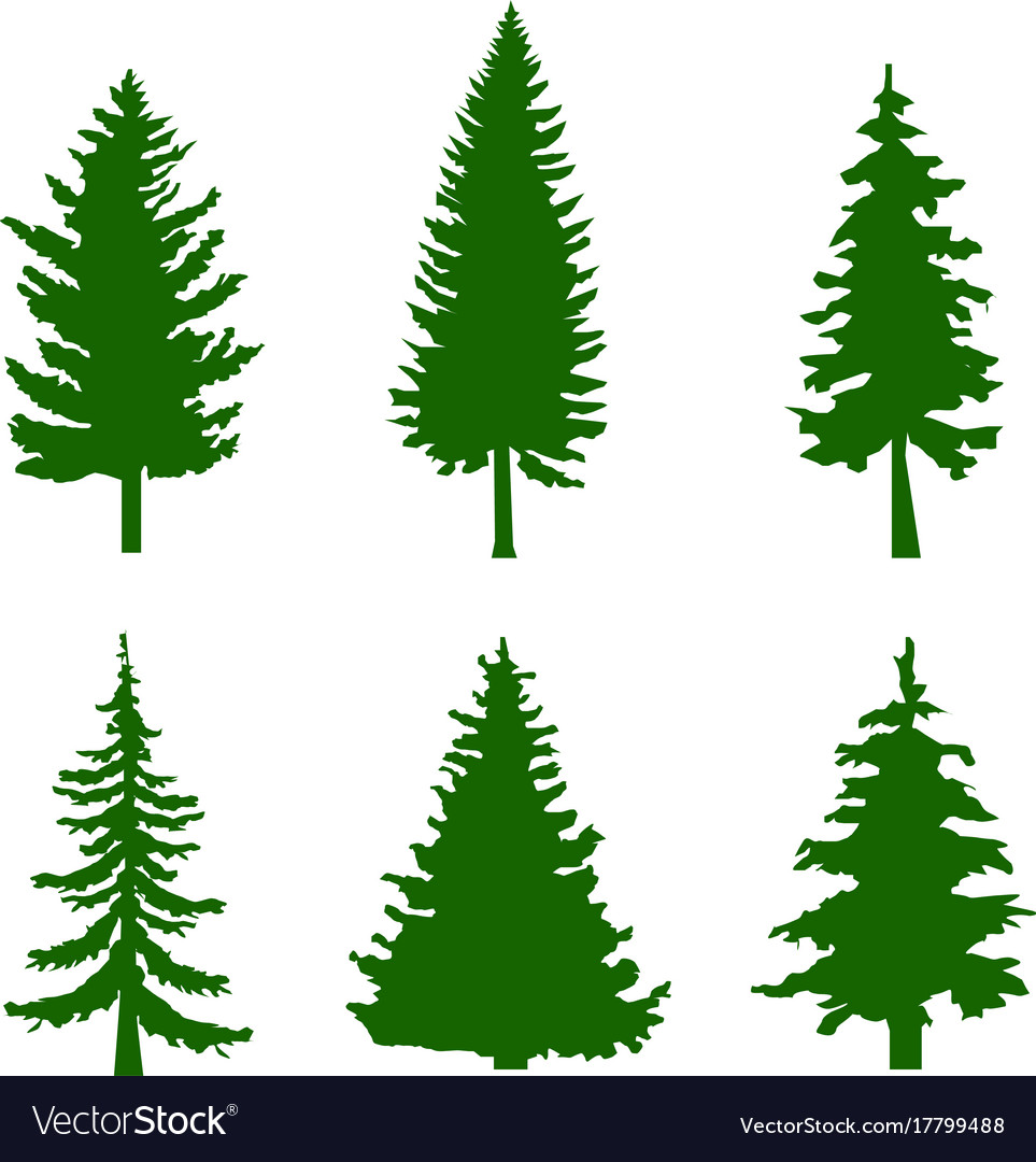 Set of green silhouettes of pine trees on white.