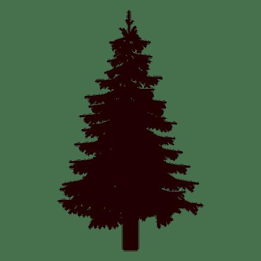Fir tree silhouette.