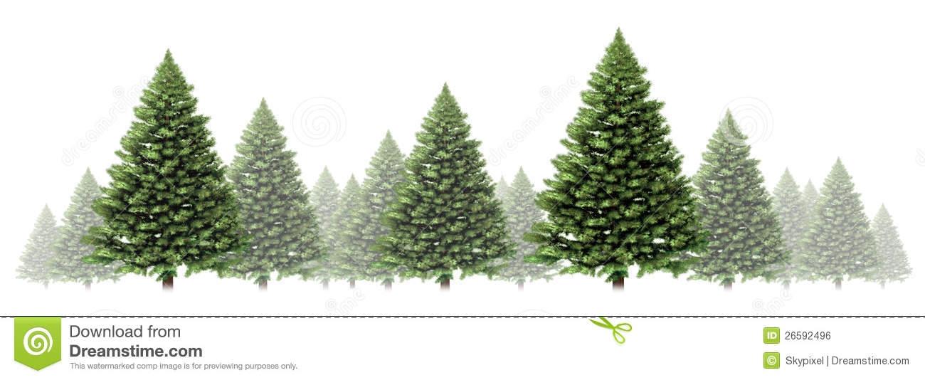Pine Tree Snow Borders Clipart.