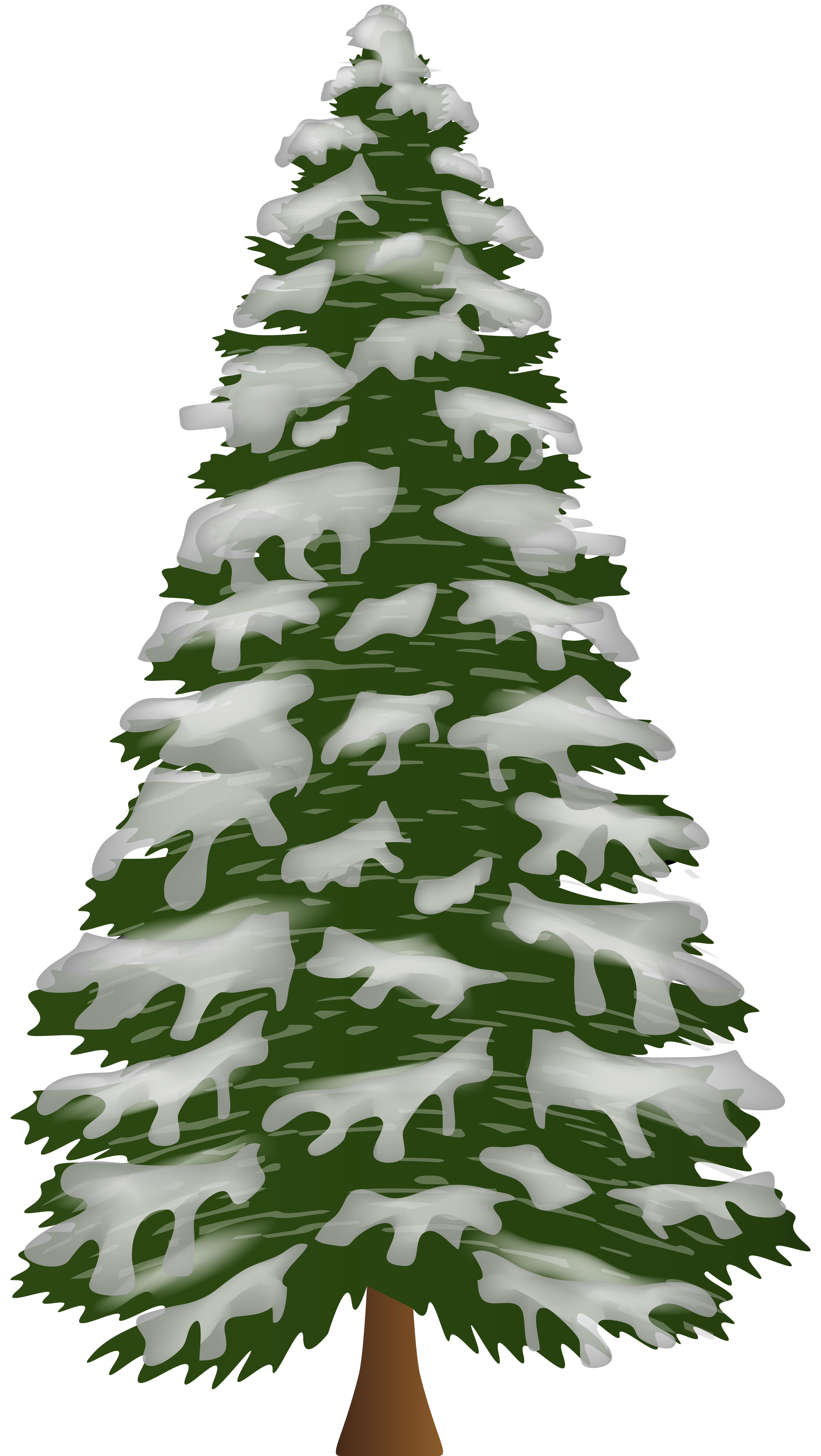 Pine Tree with Snow PNG Clip Art.