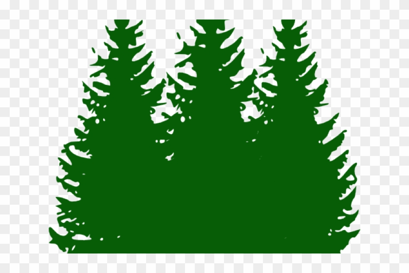 Pine Clipart Small Tree.