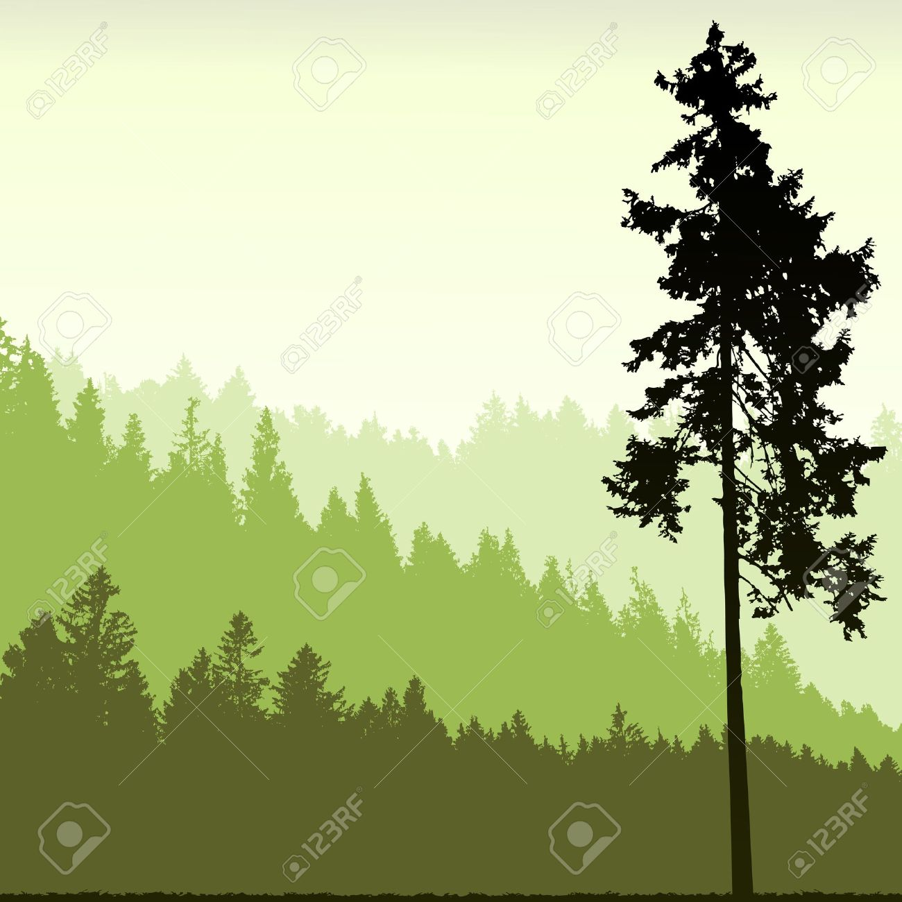 Pine tree landscaping background clipart.