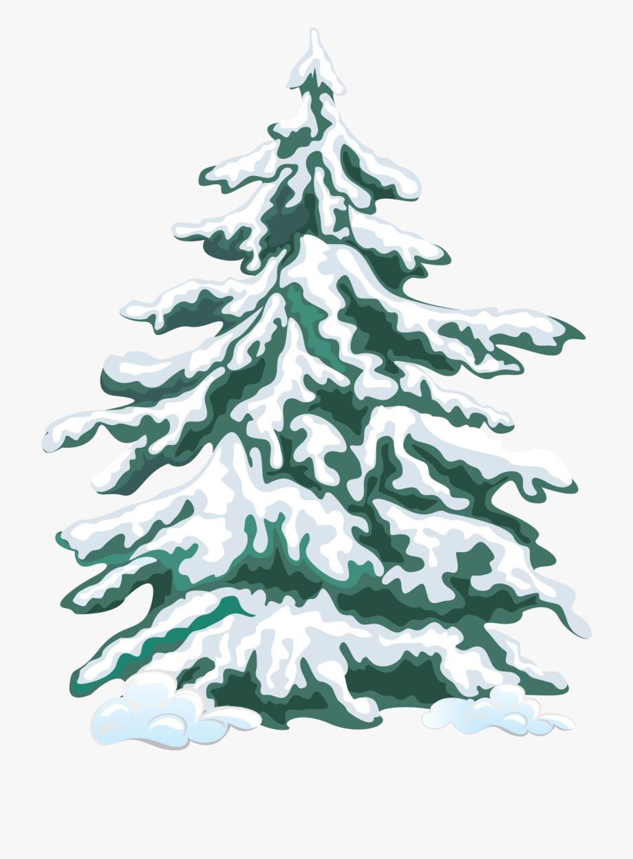 Web Design Development Evergreen Trees And Clip.