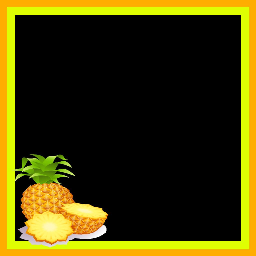 mq orange ananas pineapple fruit frame frames border.