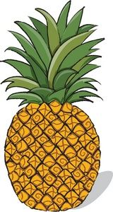 1000+ ideas about Pineapple Clipart on Pinterest.