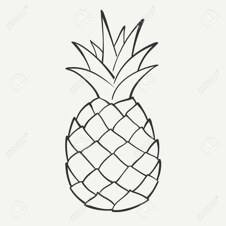 3665 Pineapple free clipart.