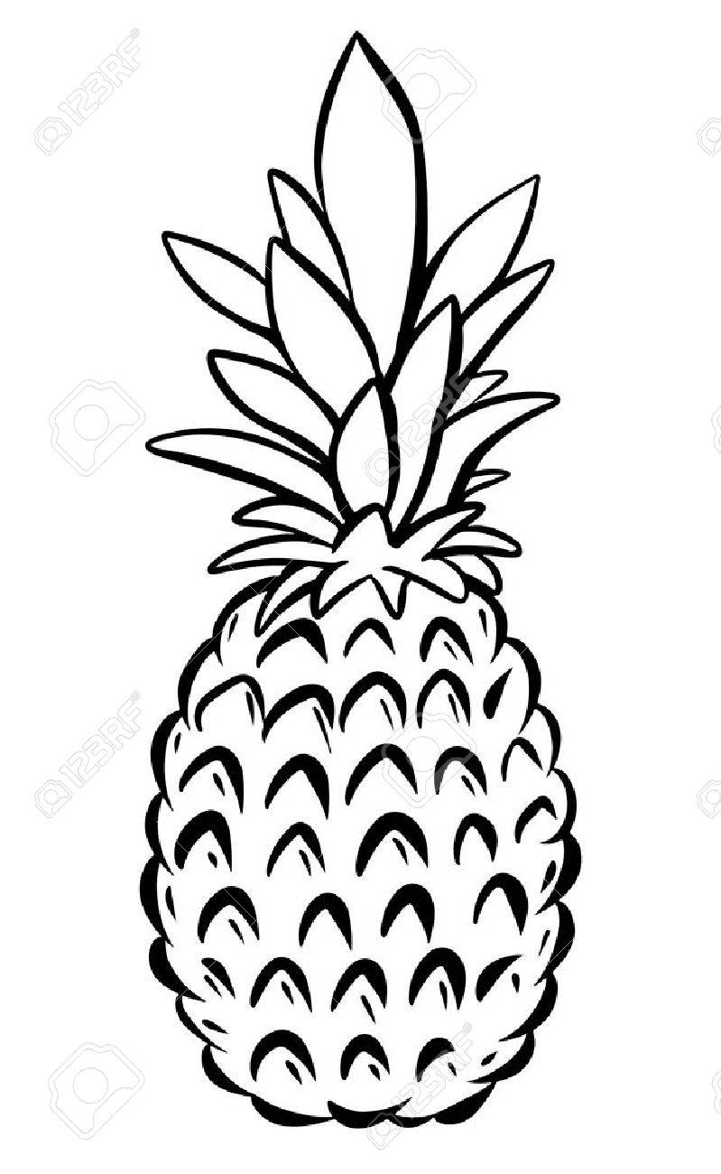 Black and white pineapple clipart 4 » Clipart Station.