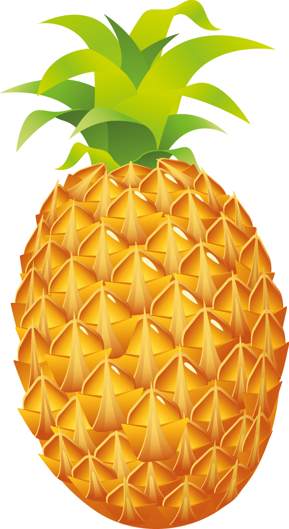 Pineapple Luau Fruit Clip art.