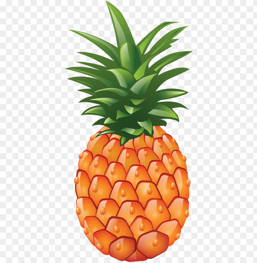Download pineapple clipart png photo.