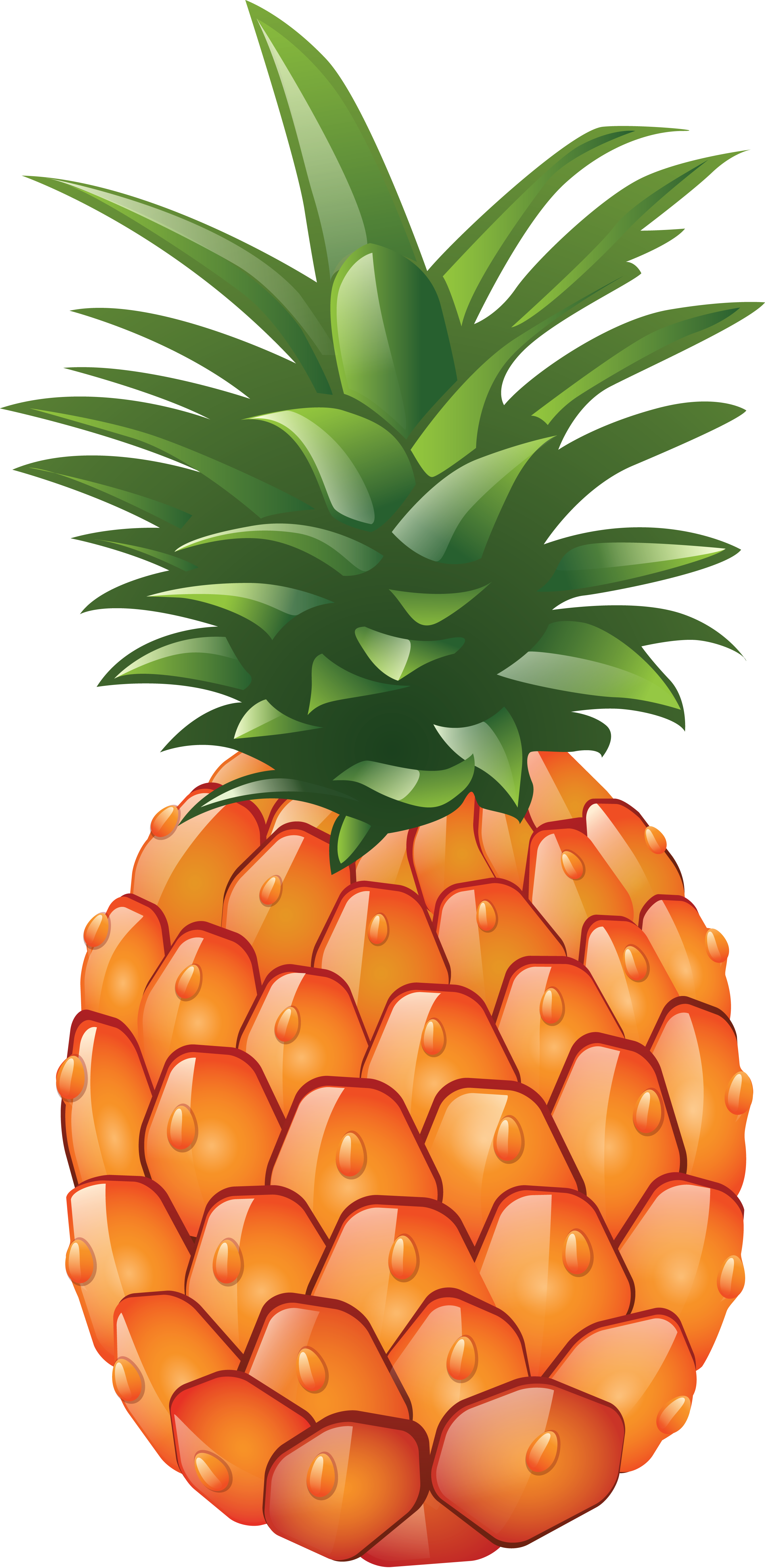 Pineapple Fruit Transparent PNG Images Free Download.
