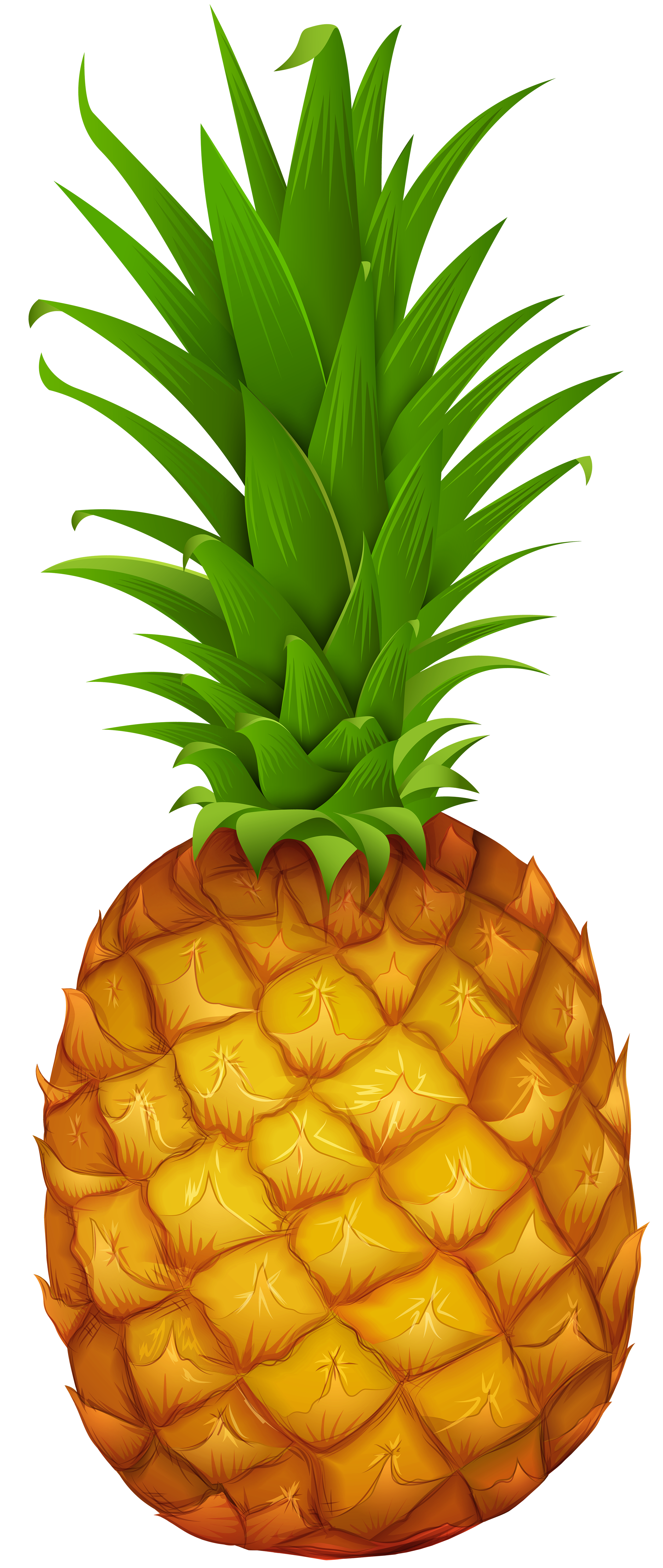 Pineapple PNG Clipart.