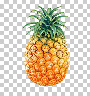 8 pineapple Tumblr PNG cliparts for free download.