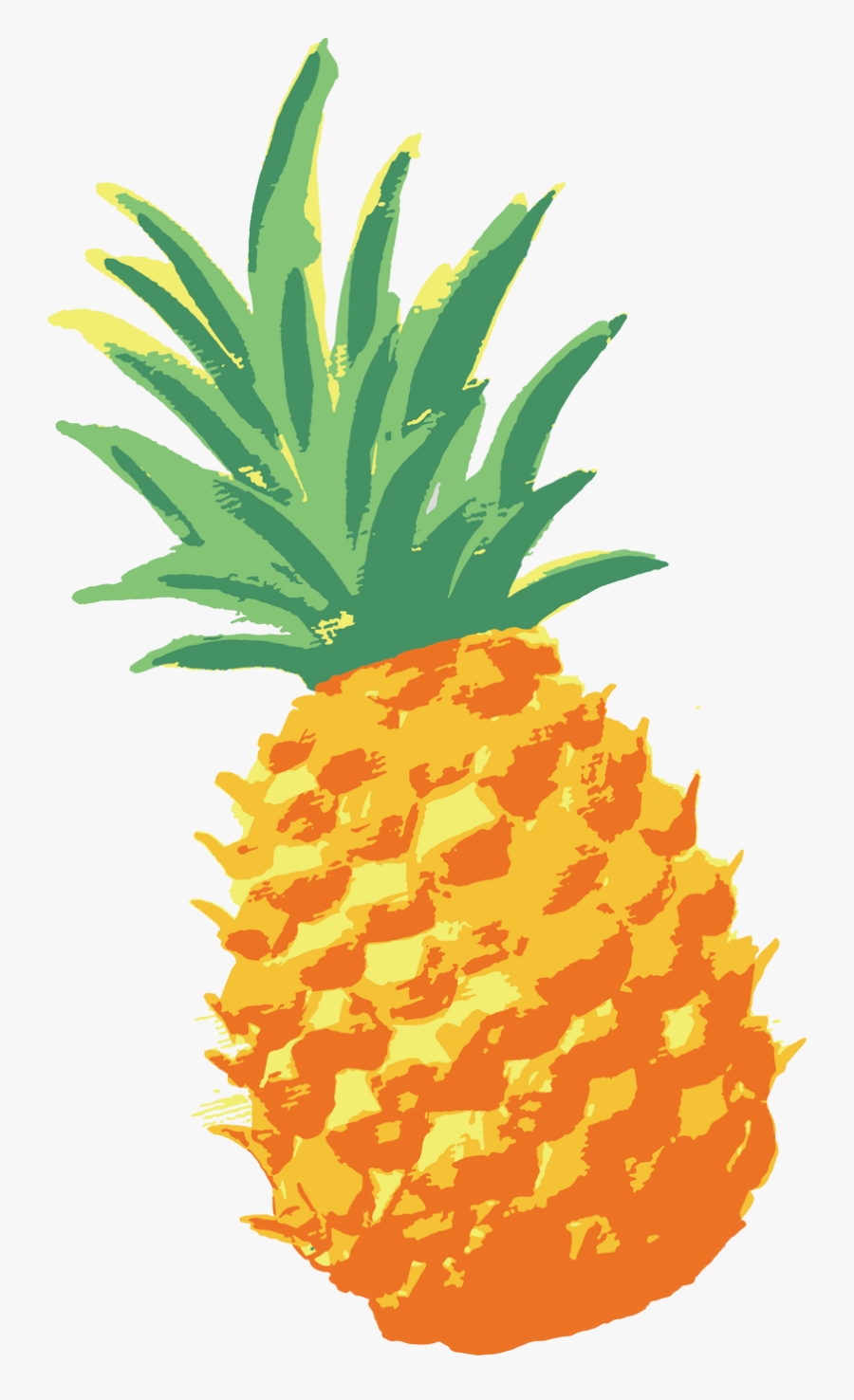 Network Ananas Pineapple Watercolor Vector Graphics.