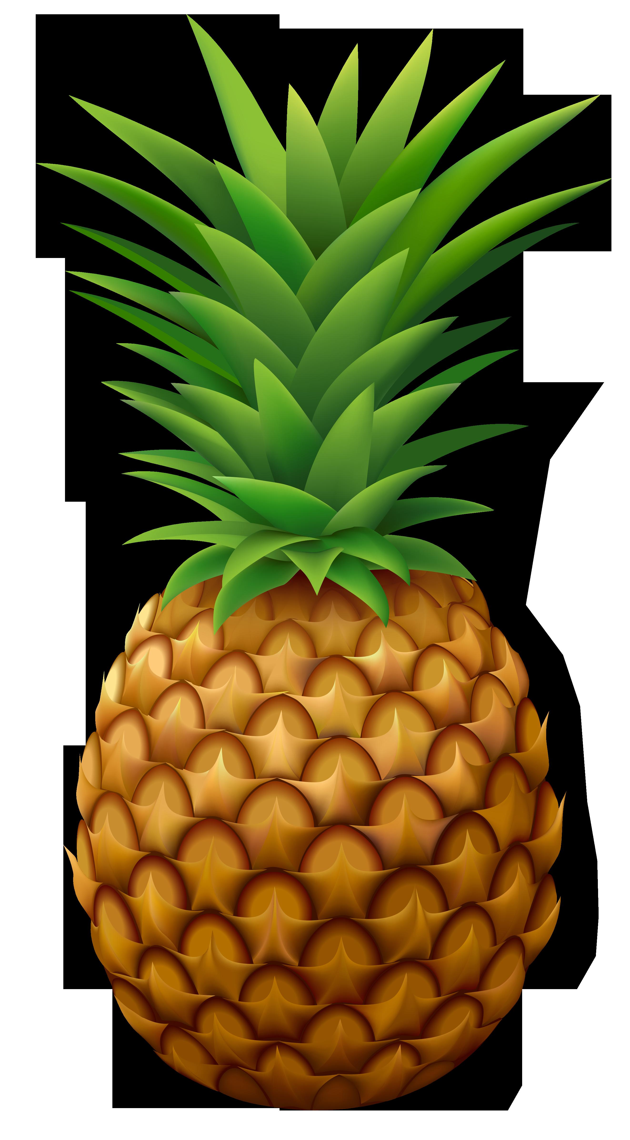 Sour Juice Pineapple Food Clip art.