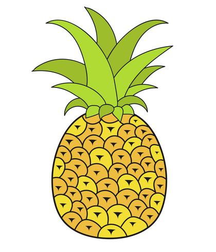 Summer Fruits For Healthy Lifestyle. Pineapple Fruit. Vector.