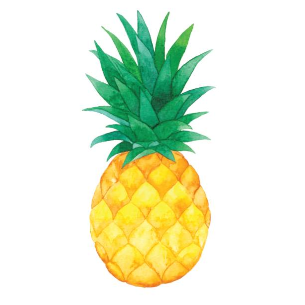 Pineapple Clip Art & Free Pineapple Clip Art.png Transparent.