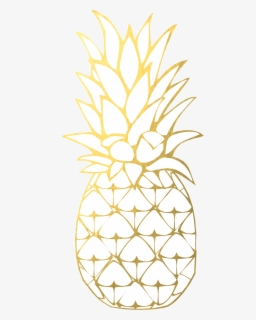 Free Pineapple Clip Art with No Background.