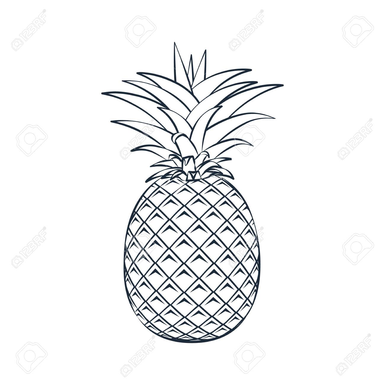 Pineapple Silhouette Outline.