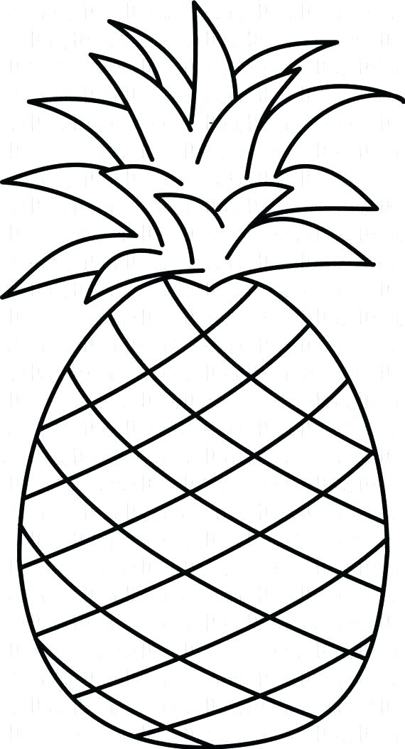 Pineapple Outline Drawing.