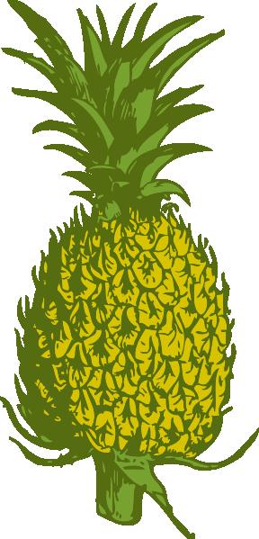 Pineapple Clip Art at Clker.com.