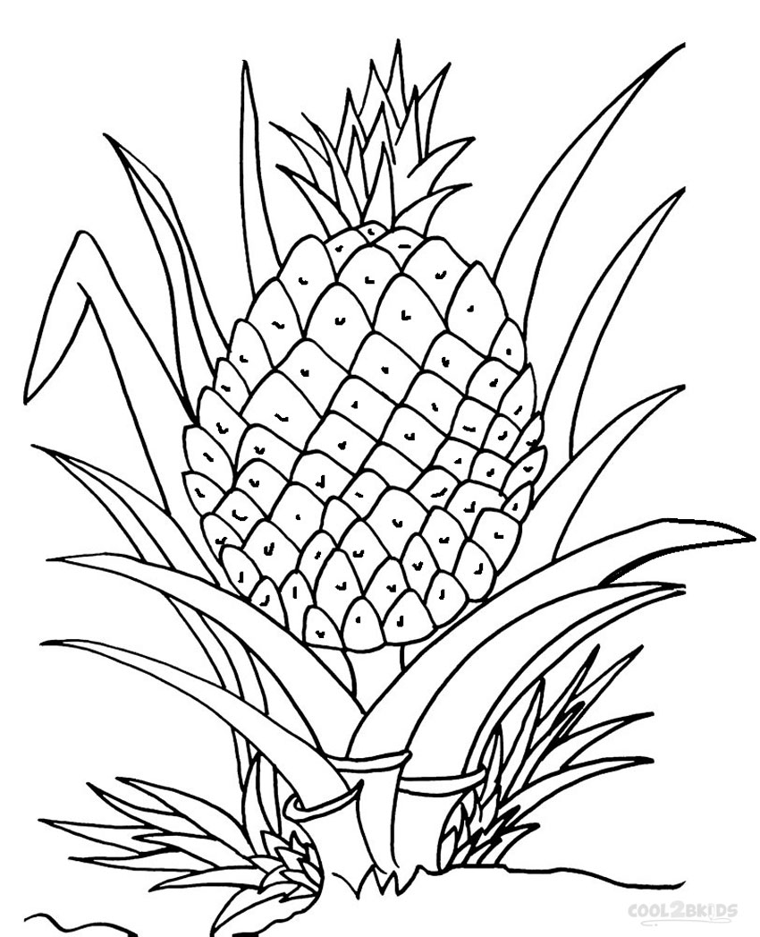 Printable Pineapple Coloring Pages For Kids.