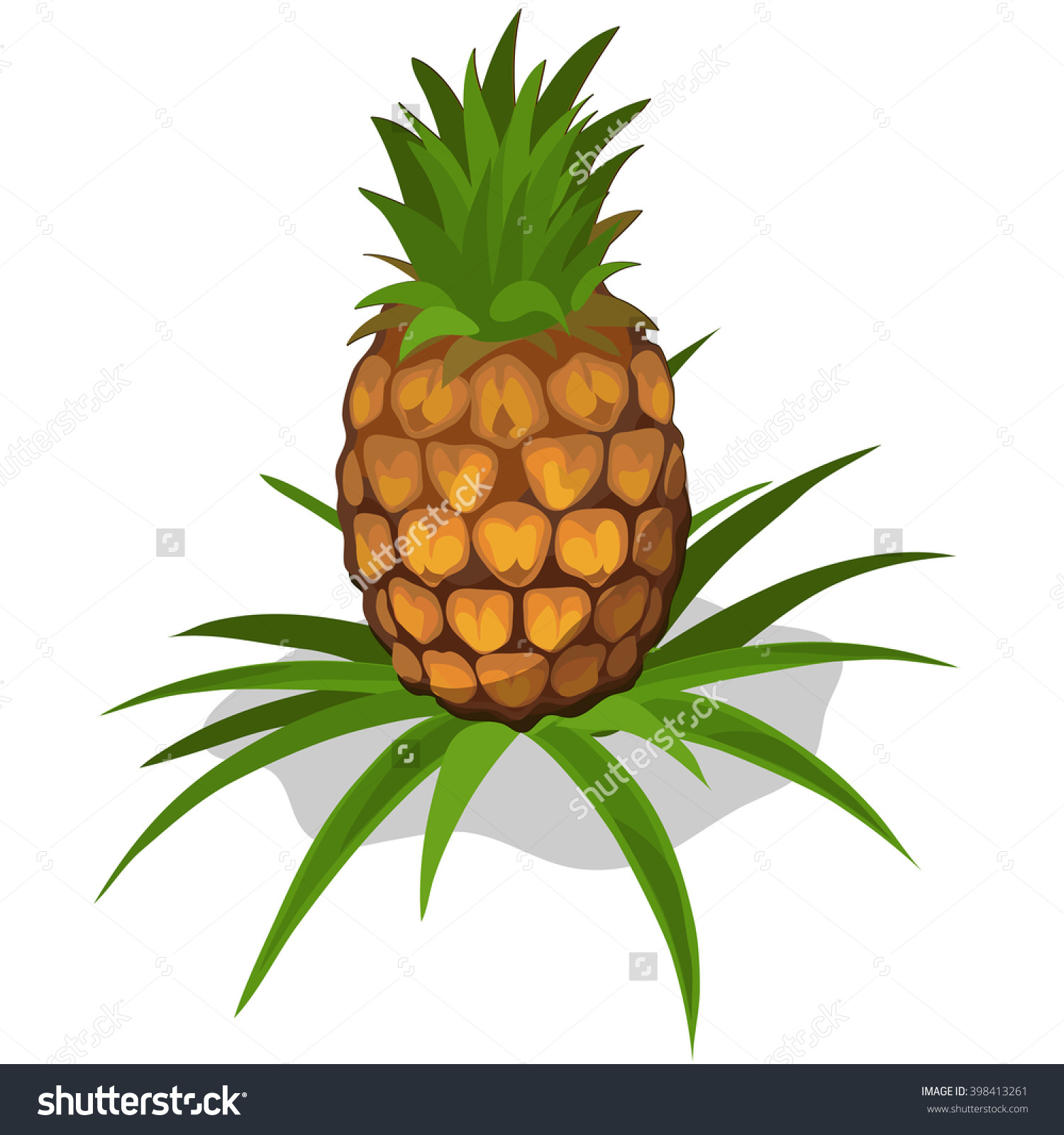 Pineapple plant clipart - Clipground