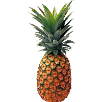 Download Pineapple Free PNG photo images and clipart.