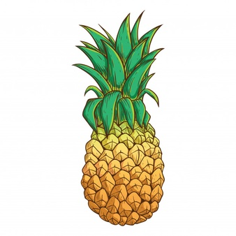 Pineapple Vectors, Photos and PSD files.