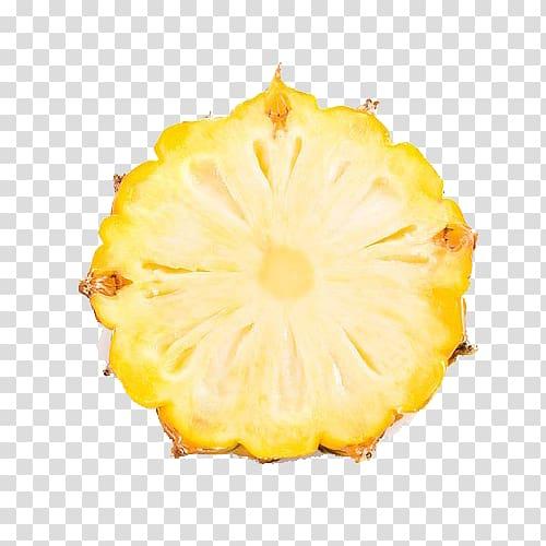 Sliced pineapple, Juice Pineapple Slice Fruit, Creative.