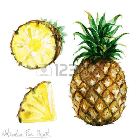 152 Pineapple Top Cliparts, Stock Vector And Royalty Free.