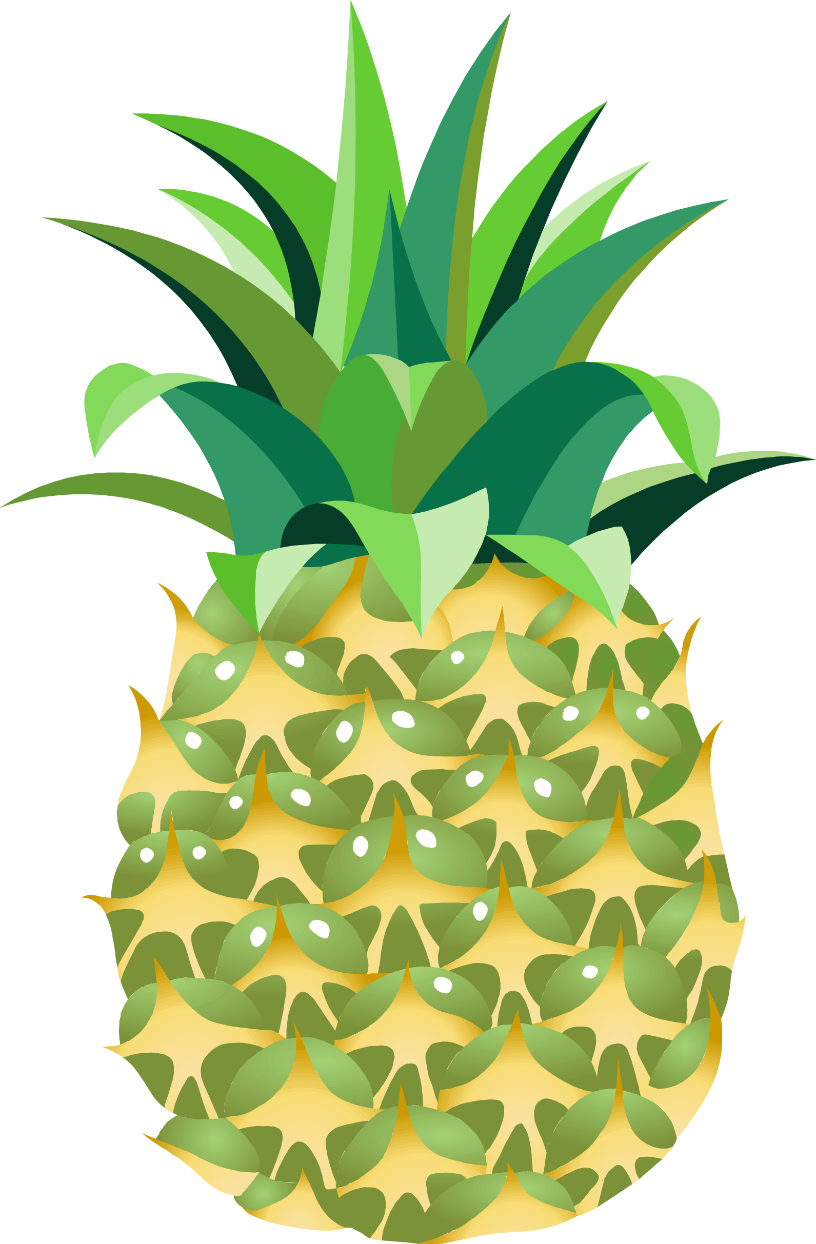 Pineapple Fourteen.
