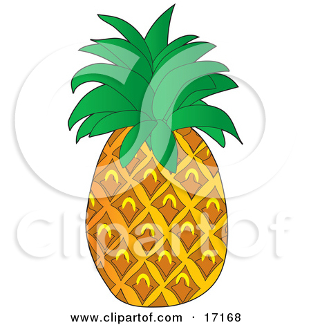 Pineapple leaves clipart.