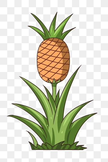 Pineapple Tree Png, Vector, PSD, and Clipart With.