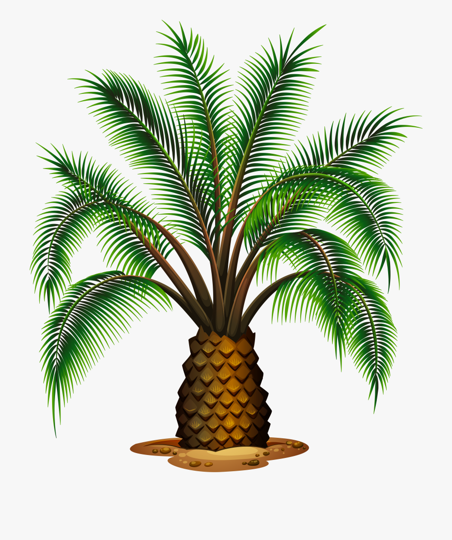 Palm Tree Clipart Pineapple Tree.