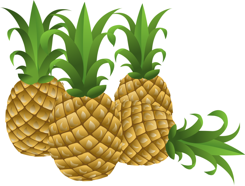 Free to Use & Public Domain Pineapple Clip Art.