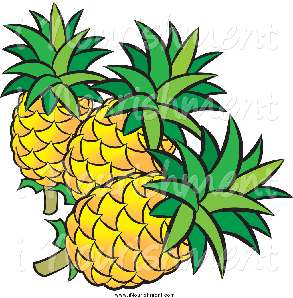 Clipart of Three Pineapples and Leaves by Lal Perera.