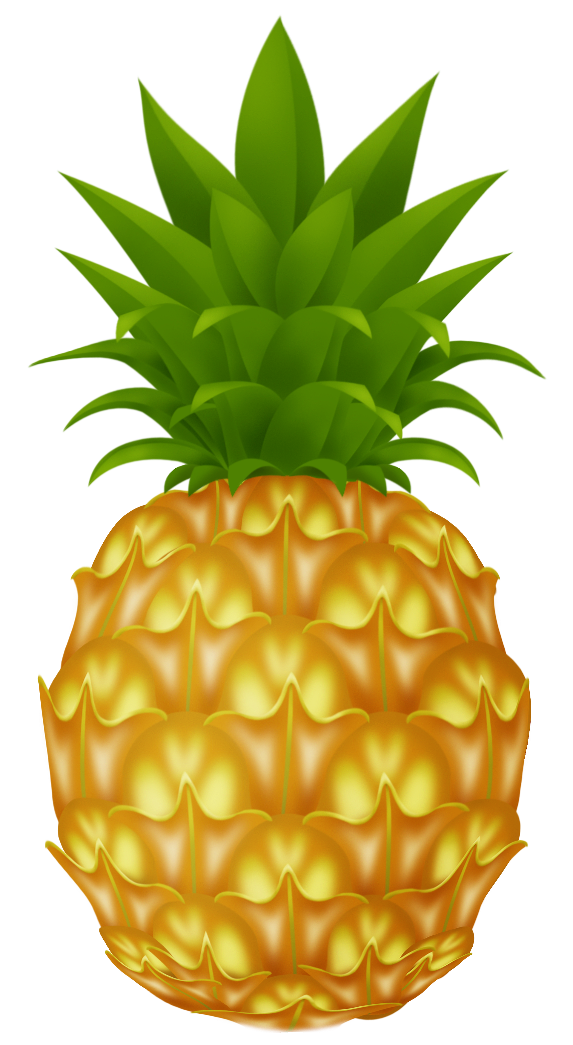 Pineapples clipart clipground for Pineapple in the ground