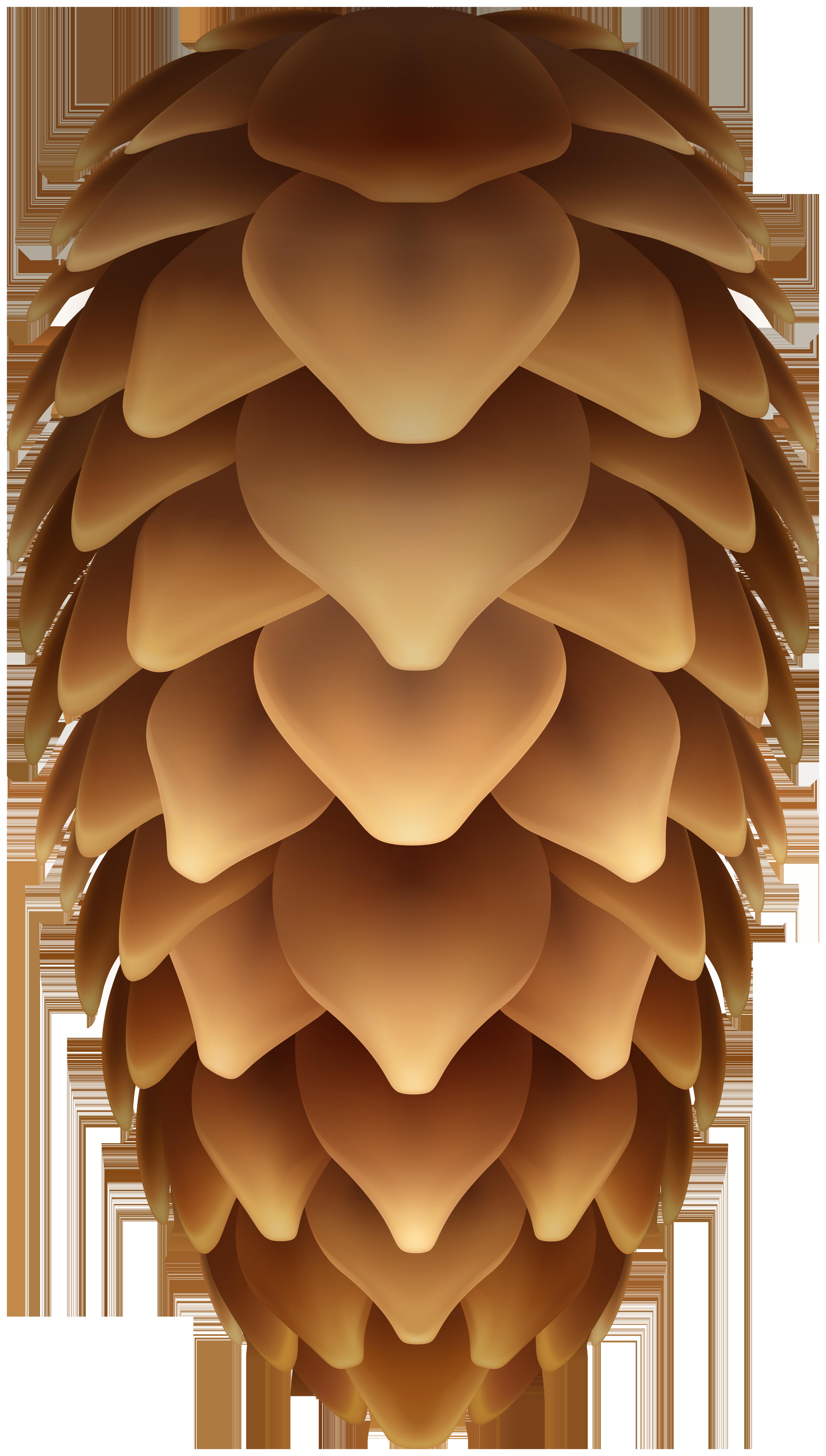 Pinecone Transparent Clip Art Image.