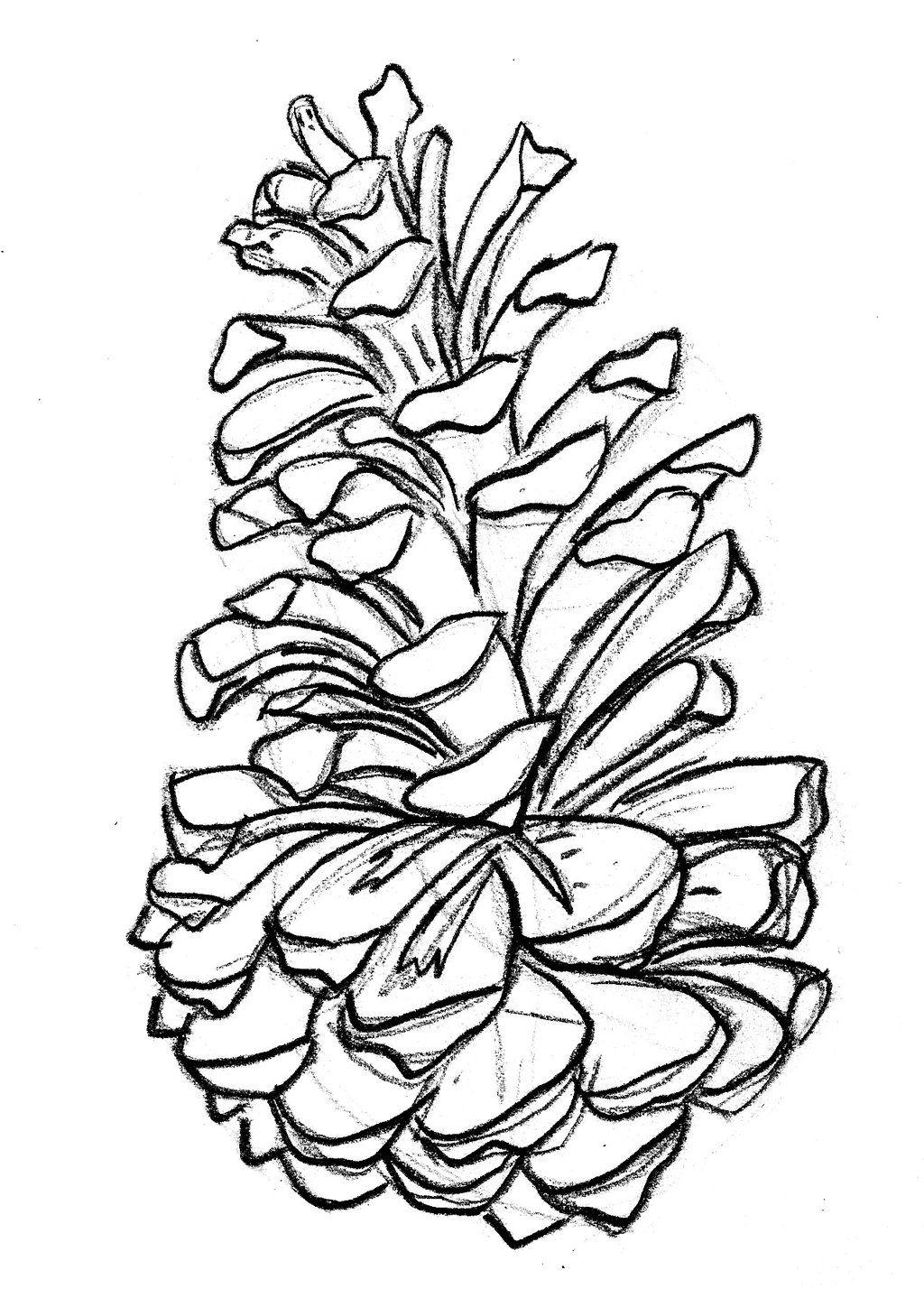 1024x1428 Pine Cone Clipart Black And White.