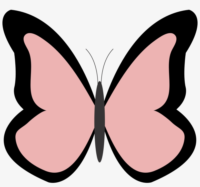 Net » Clip Art » Butterfly Color Colour Rosy Brown.