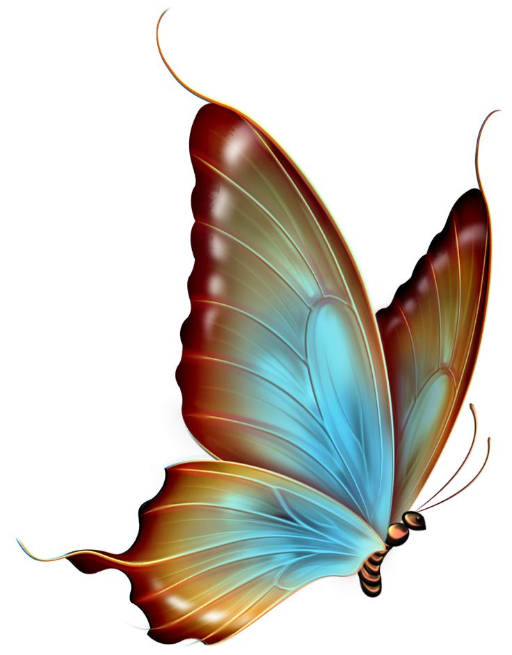 Simple pink butterfly clipart.