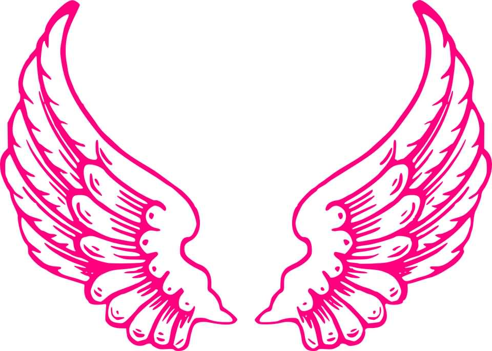 Beautiful Pink Angel Wings Picture.