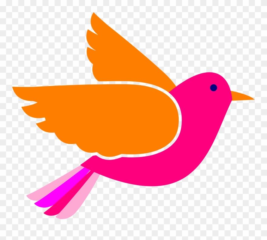 Bird Face Clip Art Pink Birds Png Transparent Png (#247783.
